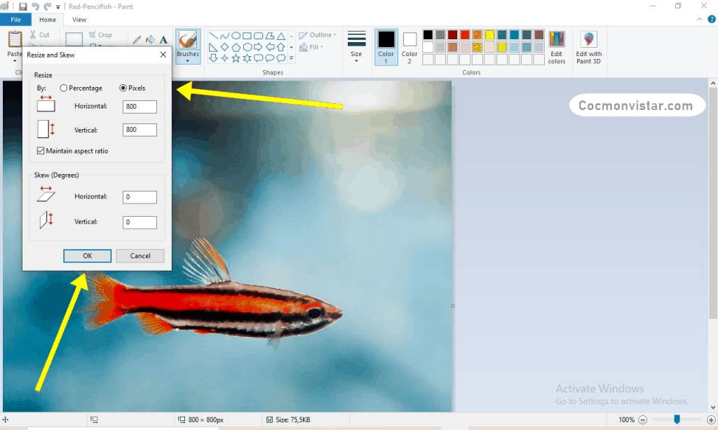 Cara Meningkatkan Kualitas Foto Termudah Work 100%